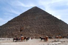 12 Giza