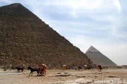 13 Giza