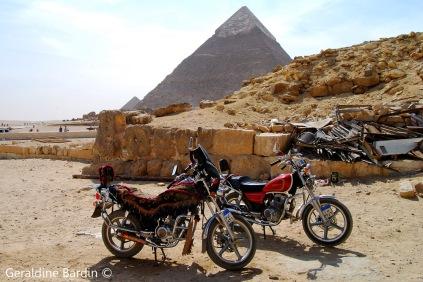 15 Giza