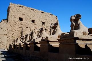 19 Karnak