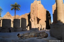 20a Karnak