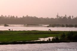 27 River Nile