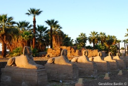 28 Luxor