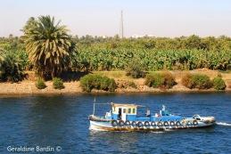 31 River Nile