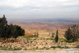 38 The promised land viewed from Madaba