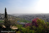 44 Jerusalem