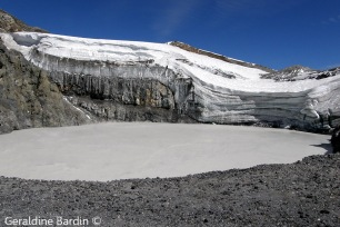 Crater del Volcán Copahue