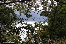 Lago Cisne