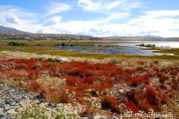 Lago Argentino, El Calafate