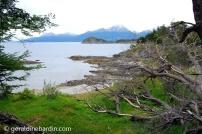 PN Tierra del Fuego