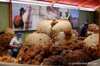 Una tejedora trabajando con alpaca en un telar